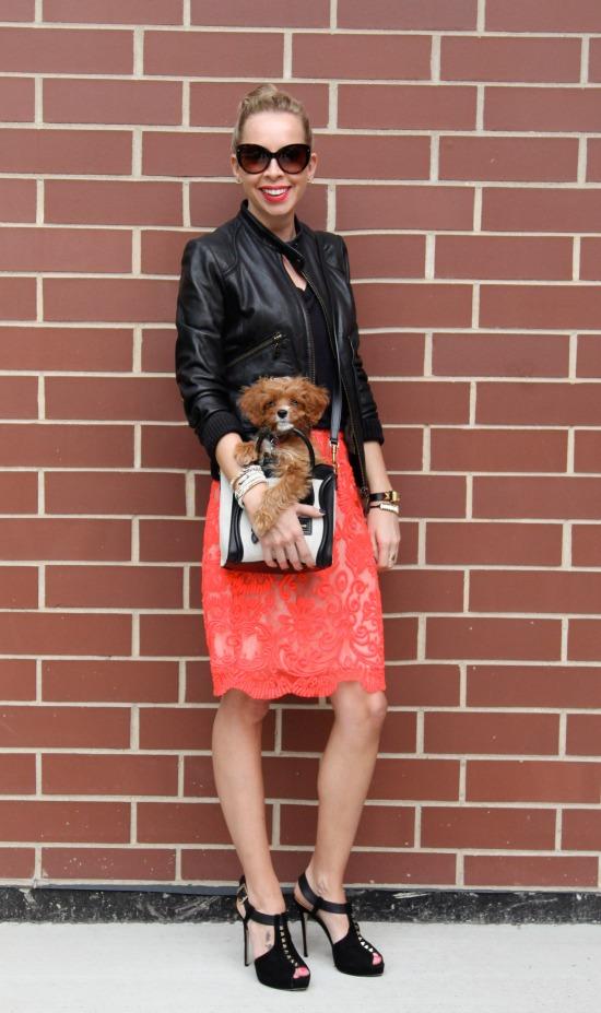 Miss Renaissance Puppy and Celine Nano