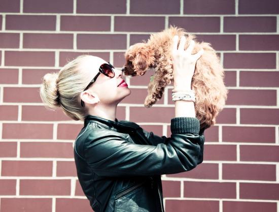 Miss Renaissance Mini Dog Celine